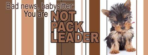 notpackleader