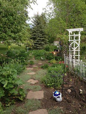 Cat Garden1