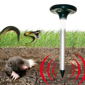The death stick's reassuring depiction of what's going on in my backyard.